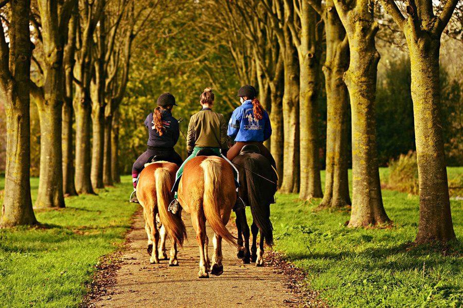 Les hauts lieux de l'équitation en France